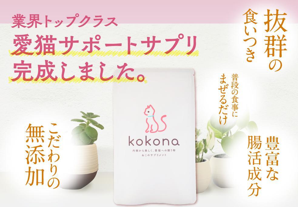ここな(kokona) 公式サイトへ