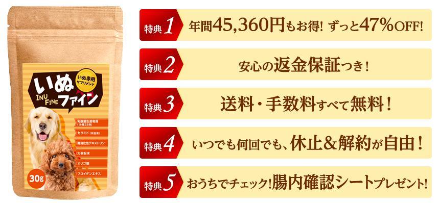 いぬファイン-INU FINE- 定期コース特典