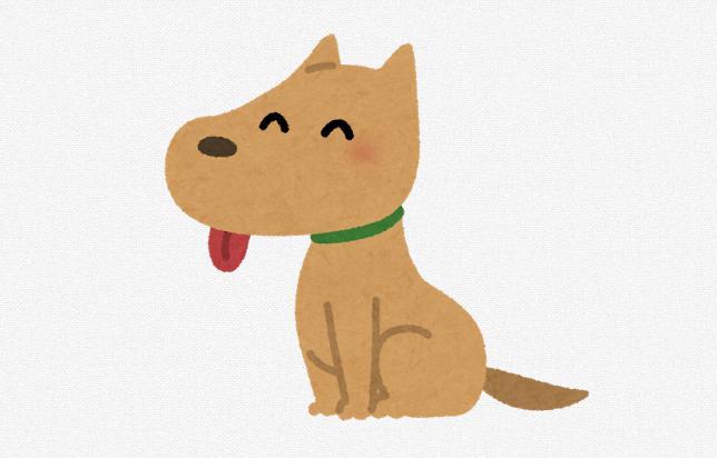 安全な国産無添加ドッグフード(犬)おすすめ比較ランキング!口コミ・評判!とは